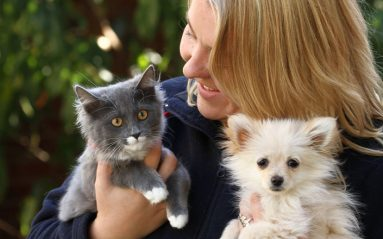 A staff member holds a grey kitten and small whit dog.